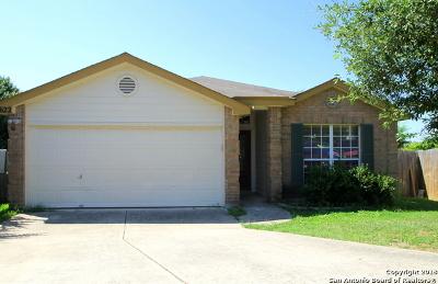 San Antonio Single Family Home New: 10622 Tiger Way