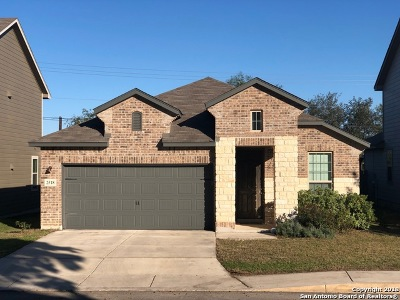 San Antonio Single Family Home New: 2518 Gato Del Sol