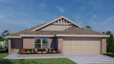 New Braunfels TX Single Family Home New: $219,500