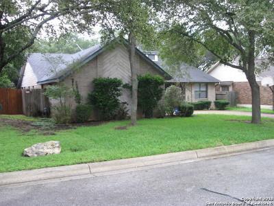 San Antonio TX Single Family Home New: $264,500