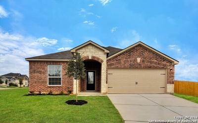 San Antonio TX Single Family Home New: $243,900