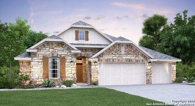San Antonio Single Family Home New: 25922 Preserve Peak