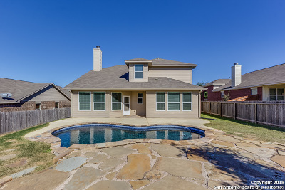 New Braunfels Single Family Home New: 339 Cylamen