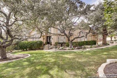 San Antonio Single Family Home New: 19203 Nature Oaks