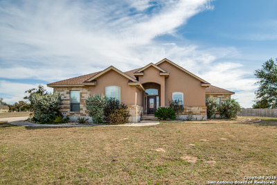 Floresville TX Single Family Home Active Option: $329,000