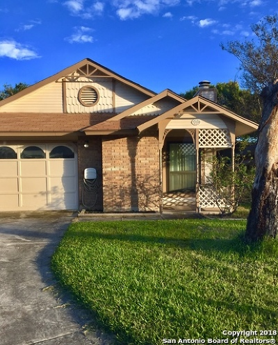 San Antonio Single Family Home New: 12038 Stoney Park