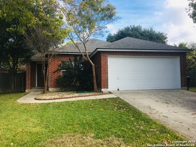 San Antonio Single Family Home New: 11007 Scenic Pt