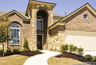 San Antonio TX Single Family Home New: $354,335