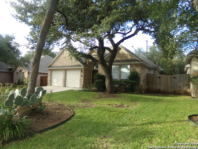 San Antonio Single Family Home New: 6023 Hart Field