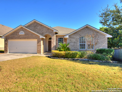 San Antonio Single Family Home New: 18502 Rogers Pass
