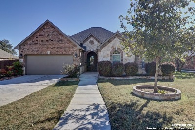 San Antonio TX Single Family Home New: $399,900