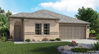 Cibolo Single Family Home New: 249 Hanover Place