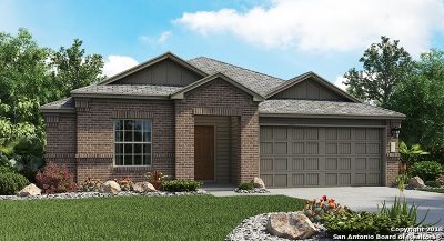 New Braunfels TX Single Family Home New: $274,499
