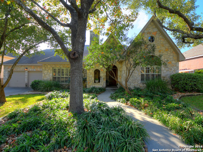 Bexar County Single Family Home New: 17315 Fountain Bluff Dr