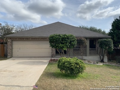 Bexar County Single Family Home New: 12016 Retama Hollow