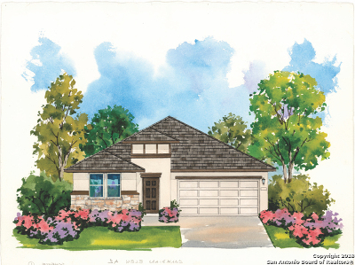 San Antonio TX Single Family Home New: $284,500
