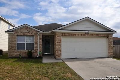Converse Single Family Home New: 10226 Southcreek