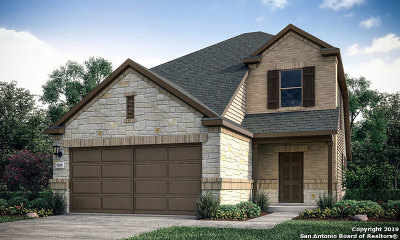 San Antonio TX Single Family Home New: $241,999
