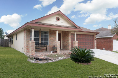 San Antonio Single Family Home New: 14226 Rosy Finch