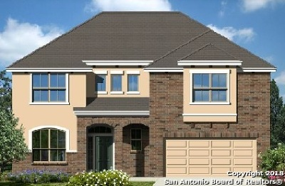San Antonio TX Single Family Home New: $355,453