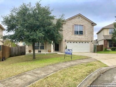 San Antonio Single Family Home New: 10326 Briar Rose