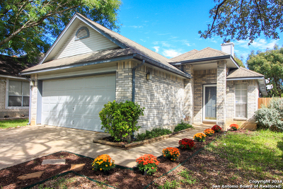 Bexar County Single Family Home Active Option: 12239 Netherwood Ln