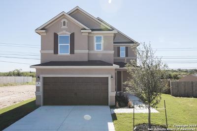 San Antonio Single Family Home New: 10230 Overlook Canyon