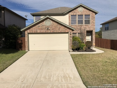 San Antonio Single Family Home New: 10823 Otter Pass