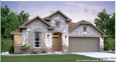 San Antonio Single Family Home New: 8811 Winchester Way