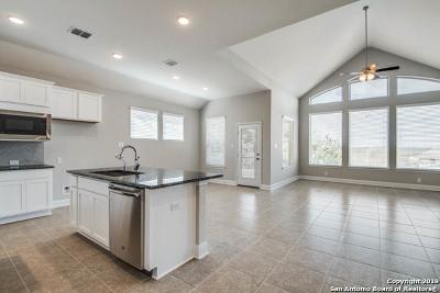 San Antonio TX Single Family Home New: $346,415