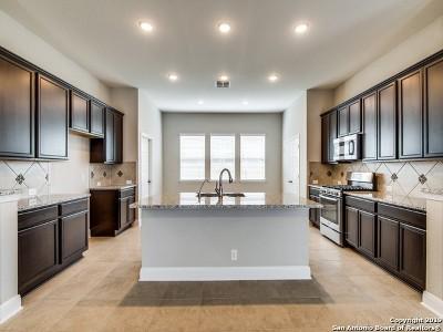 San Antonio TX Single Family Home New: $322,565