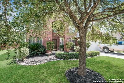San Antonio TX Single Family Home New: $339,900
