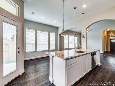 San Antonio TX Single Family Home New: $346,970