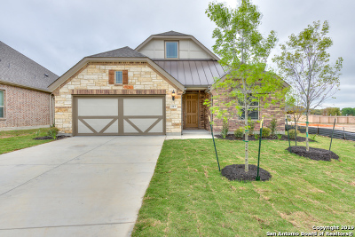 Boerne Single Family Home Price Change: 217 Aspen Dr