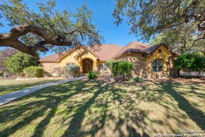 New Braunfels Single Family Home For Sale: 26634 Forest Link