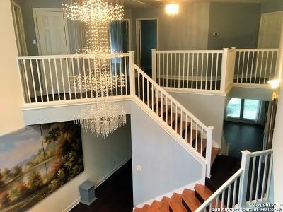 San Antonio TX Single Family Home New: $444,900