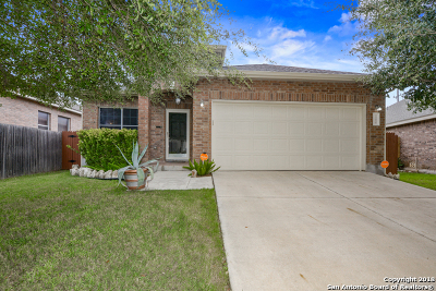 Helotes Single Family Home For Sale: 10206 Homburg Ranch