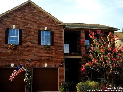 San Antonio TX Single Family Home New: $338,900