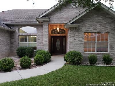 Seguin Single Family Home For Sale: 115 Parkridge Circle