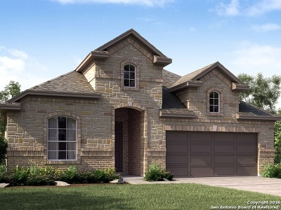 San Antonio TX Single Family Home New: $334,990