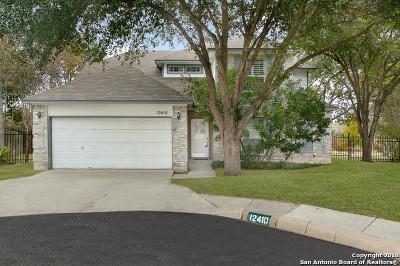 San Antonio TX Single Family Home New: $332,000