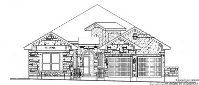 San Antonio TX Single Family Home New: $541,990