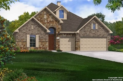 New Braunfels TX Single Family Home New: $447,799