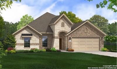 New Braunfels Single Family Home For Sale: 1410 Village Inn