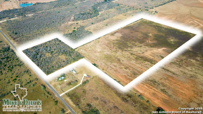 Atascosa County Farm & Ranch For Sale: 10267 Fm 2146 Tract 4