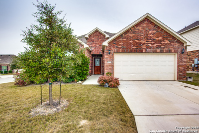 Alamo Ranch Single Family Home For Sale: 12751 Texas Gold