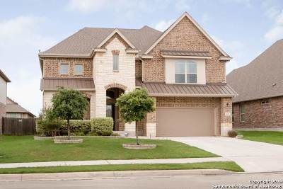 Cibolo Single Family Home For Sale: 613 Cavan