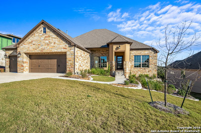 San Antonio Single Family Home For Sale: 21334 Rembrandt Hill