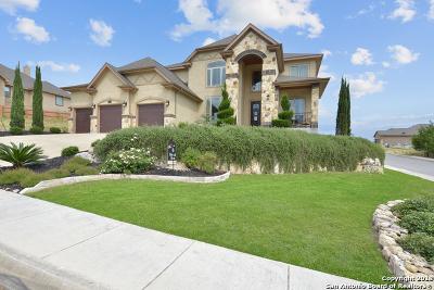 San Antonio Single Family Home For Sale: 18702 Edwards Edge