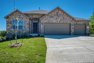 Single Family Home For Sale: 13512 Falls Summit